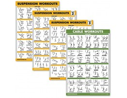 Palace Learning 4 Pack Suspension Workout Posters Volume 1 2 & 3 + Cable Workout Exercise Chart Set of 4 Posters