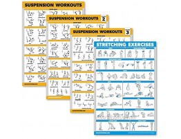 Palace Learning 4 Pack Suspension Workout Posters Volume 1 2 & 3 + Stretching Exercise Chart Set of 4 Posters